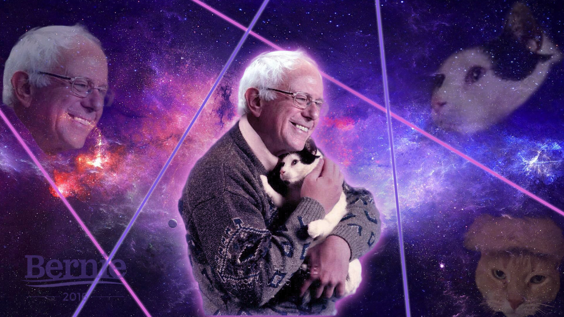 Bernie Sanders Rolls Out Daring New Plan Saying Cats Can Have A Little Salami Know Your Meme