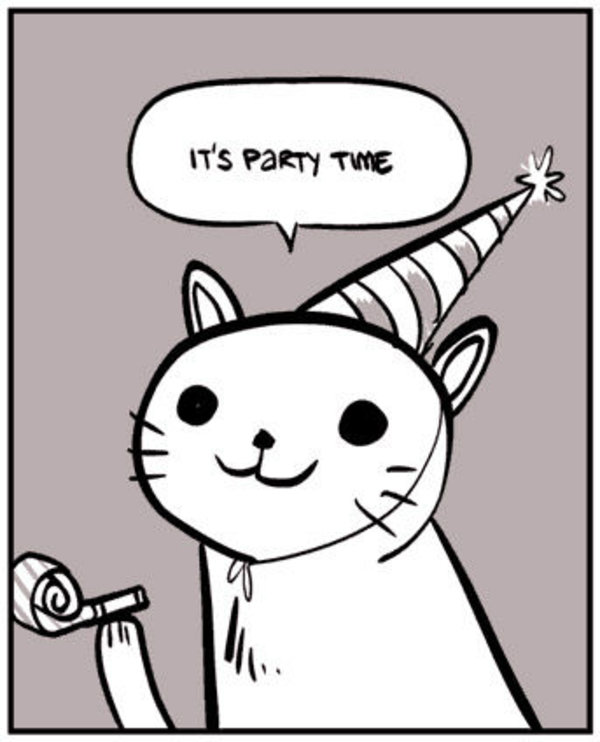 party-cat-party-time.jpg