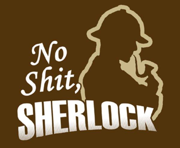 No Shit Sherlock Know Your Meme