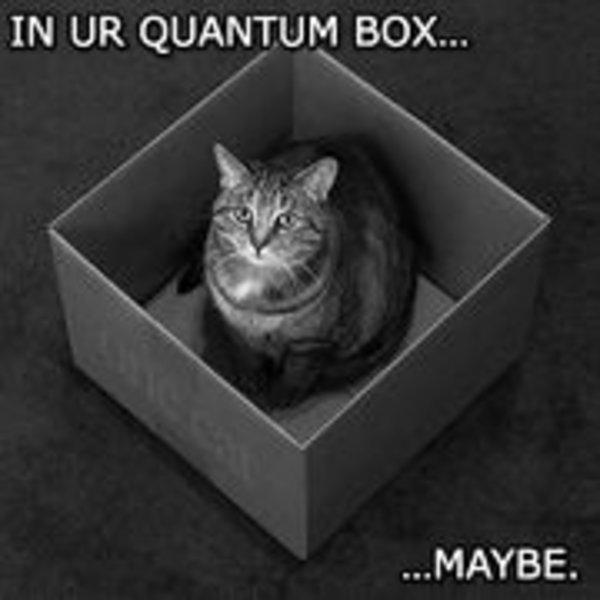 bad5eb5c0 Schrodinger's Cat | Know Your Meme