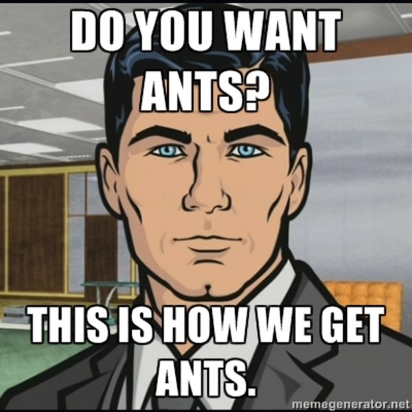 Do You Want Ants Know Your Meme