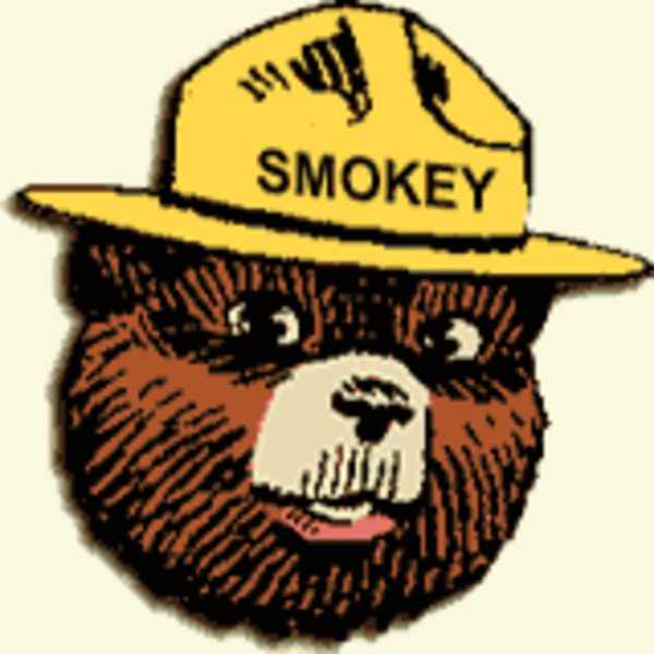 smokey the bear know your meme