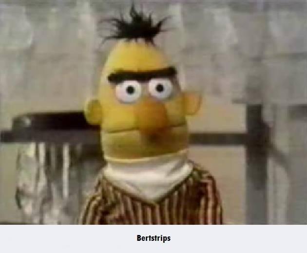 Bertstrips Know Your Meme
