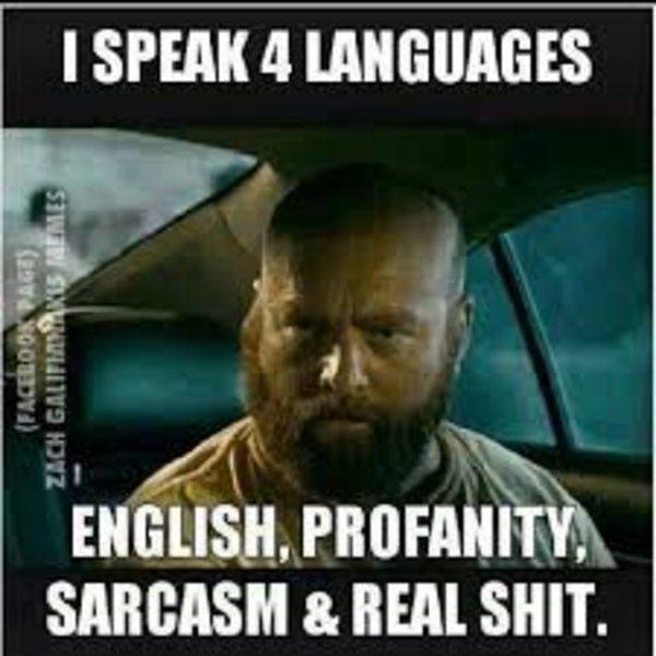 I Speak 4 Languages Know Your Meme
