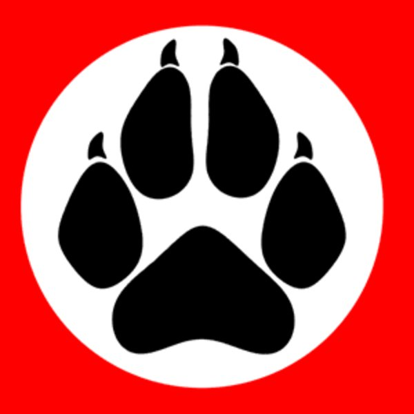 Nazi Furries Know Your Meme