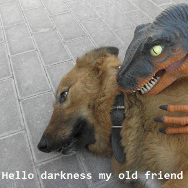 Hello darkness my old friend know your meme m4hsunfo