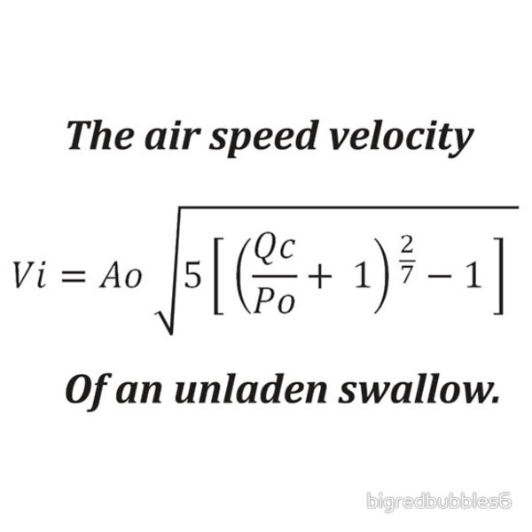What is the average velocity of an unladen swallow