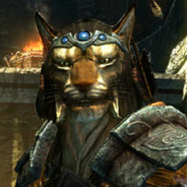 Are not skyrim khajiit male good, agree