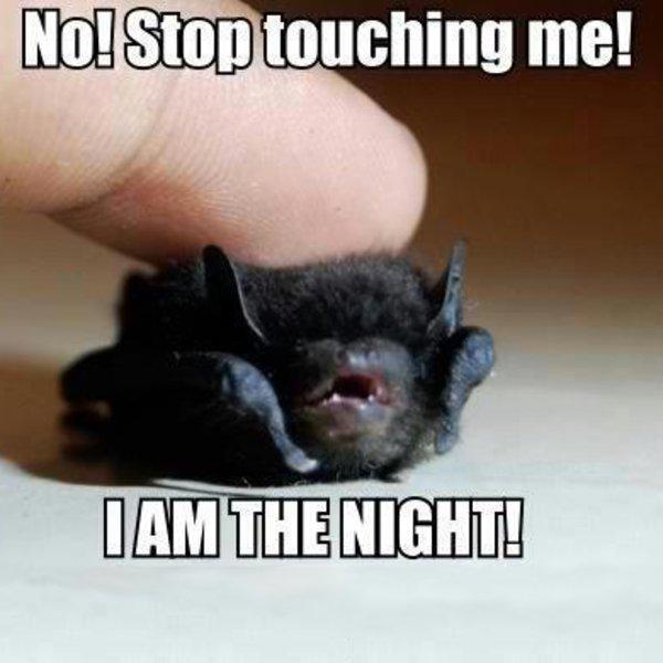 stop_touching_me.jpg