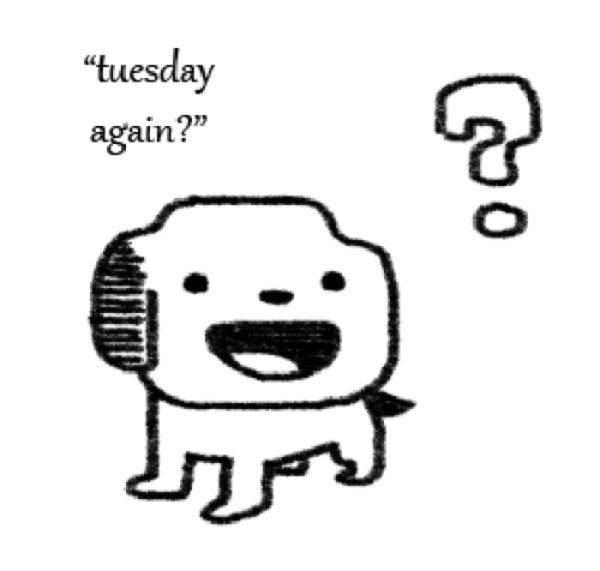 tuesday again no problem know your meme