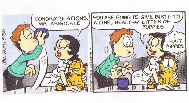Garfield Dog Semen Comic Strip Know Your Meme