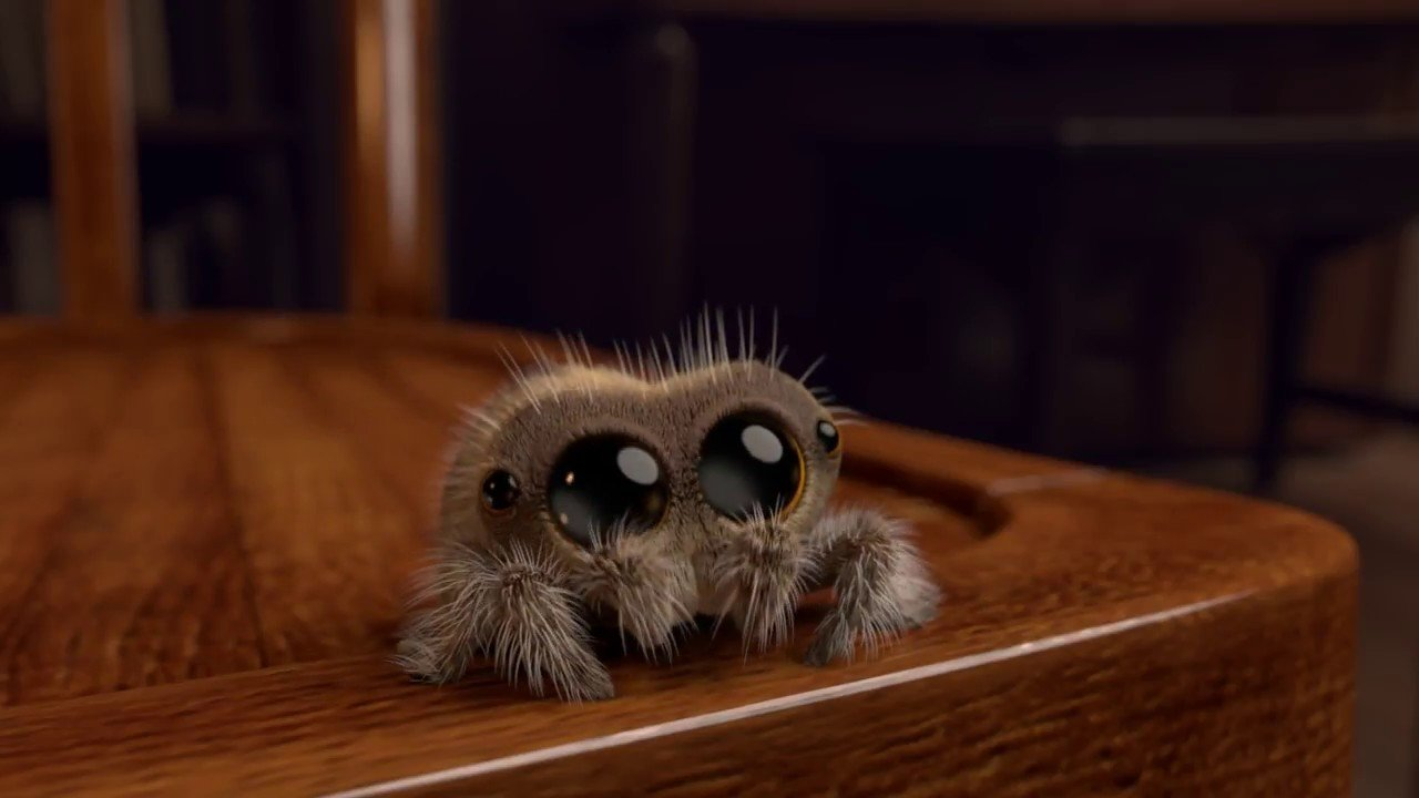 Lucas The Spider Know Your Meme