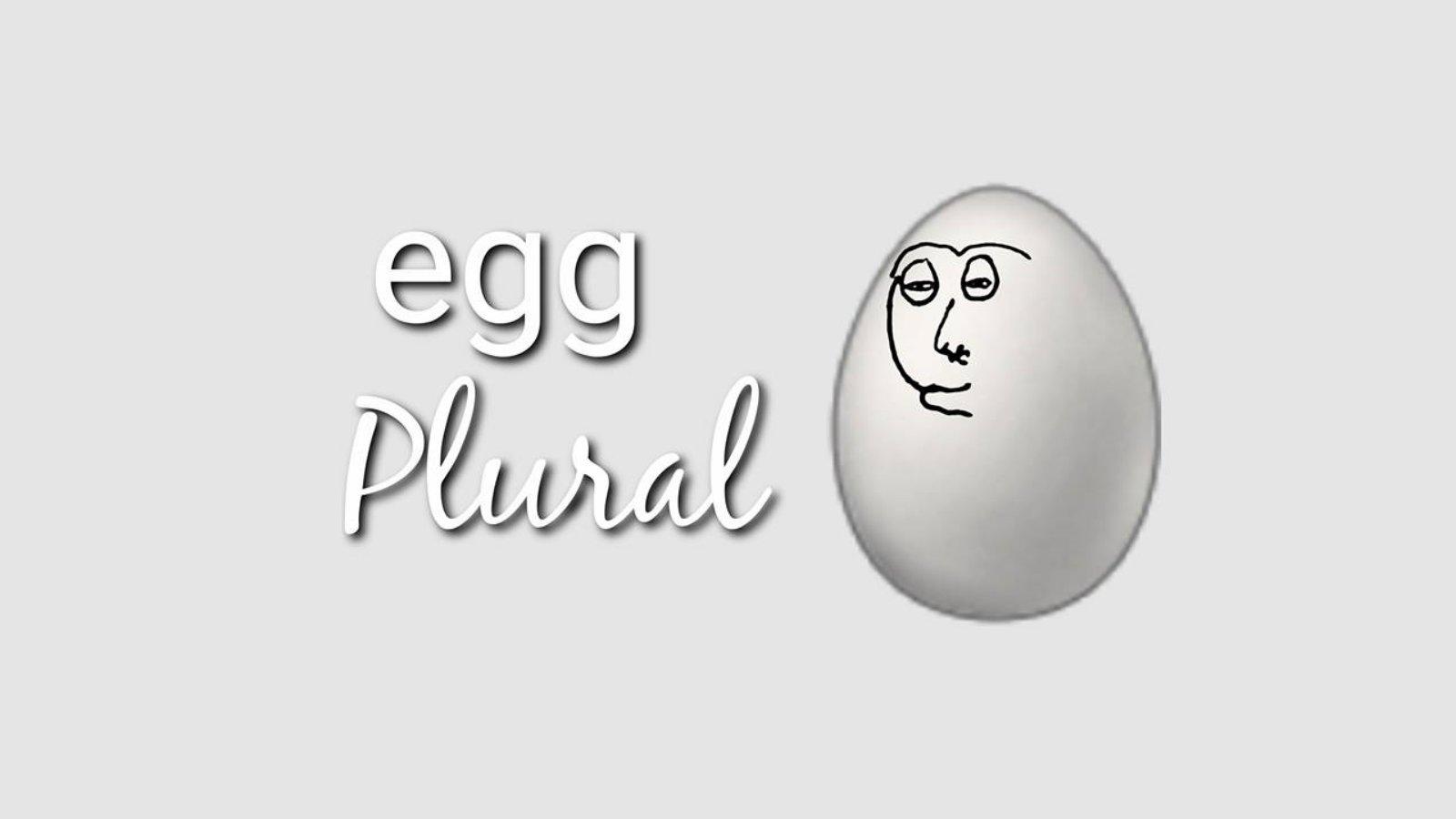 Egg Plural | Know Your Meme