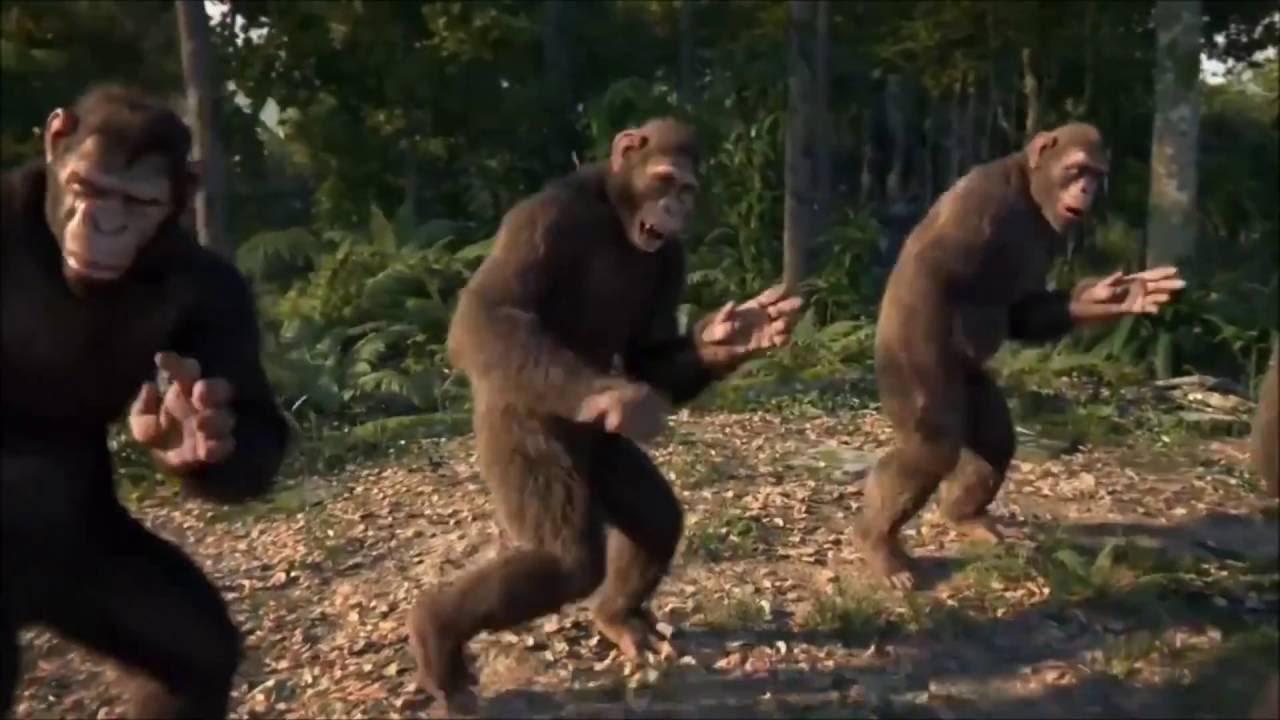 Cgi Monkeys Dancing Know Your Meme