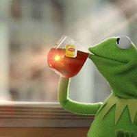 Evil Kermit Know Your Meme Esta actividad ayuda a recaudar fondos para organizaciones. evil kermit know your meme
