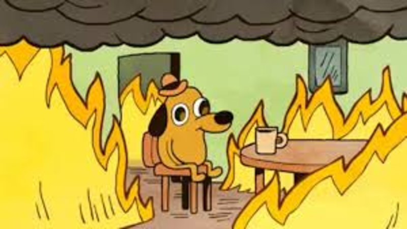 This Is Fine | Know Your Meme