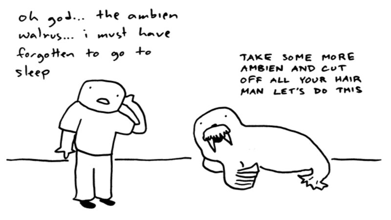 Ambien-walrus-says-lets-do-this