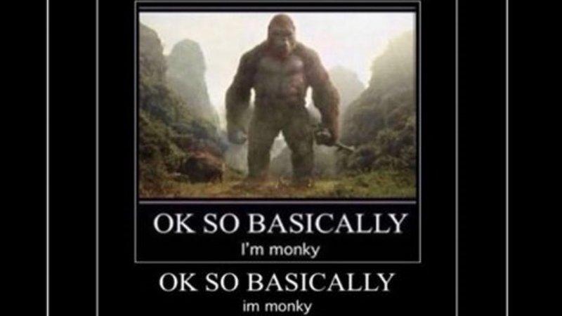 OK So Basically I'm Monky