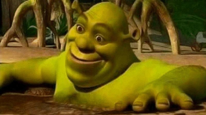 Shrek In A Mud Bath Know Your Meme