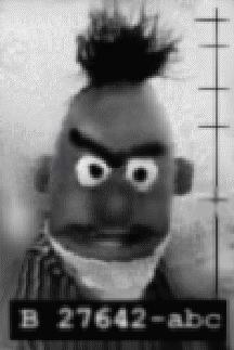 Bert Is Evil Know Your Meme