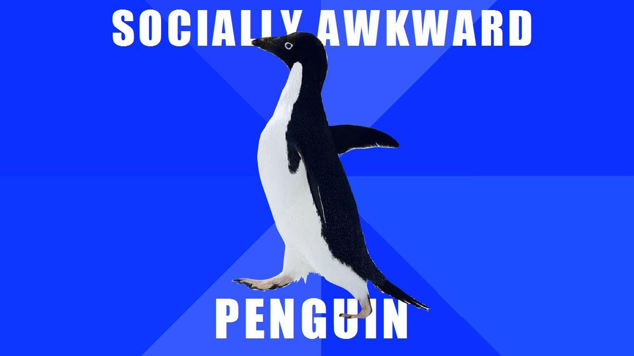 Image result for socially awkward penguin meme