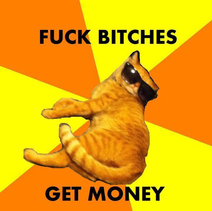 Hip Hop Cat Know Your Meme