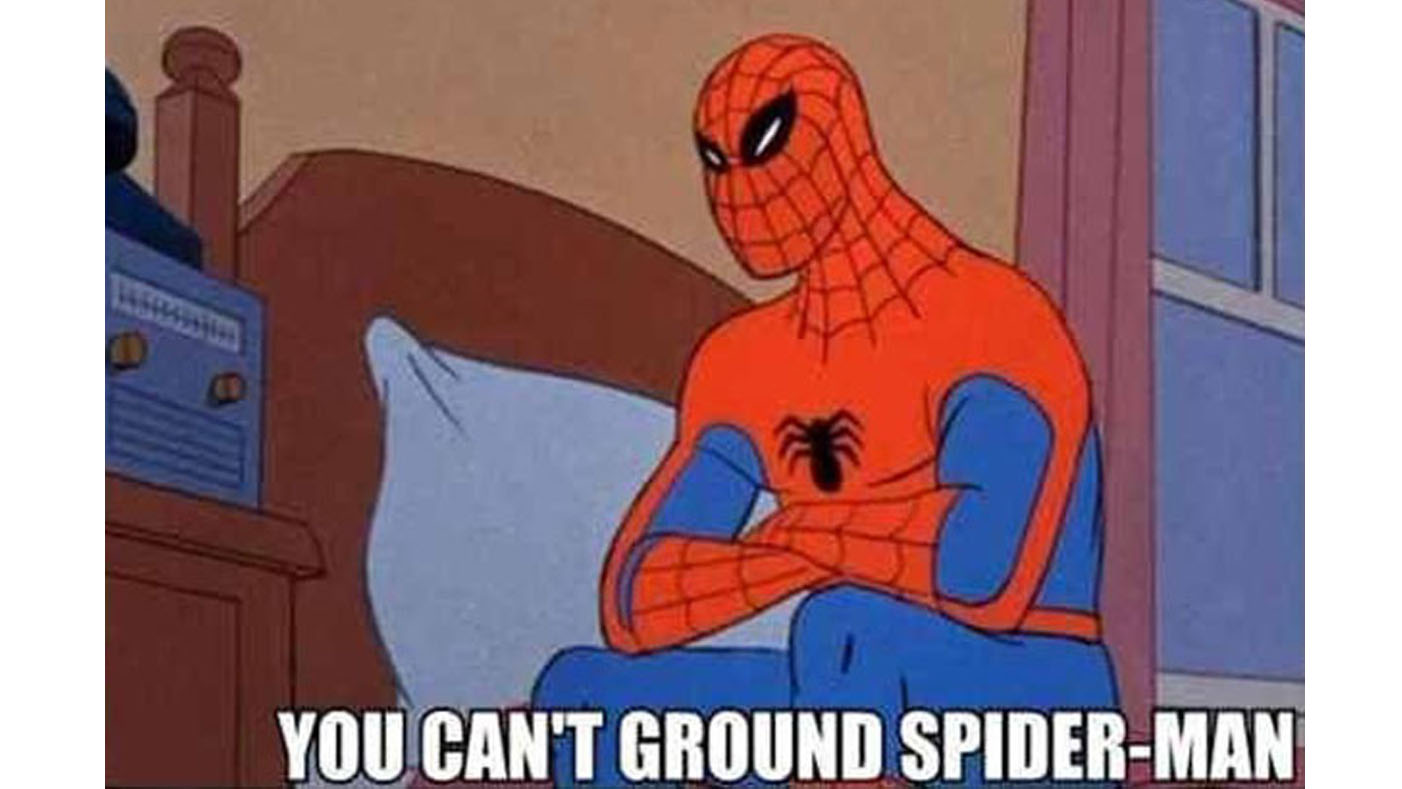 you cant ground spidey!