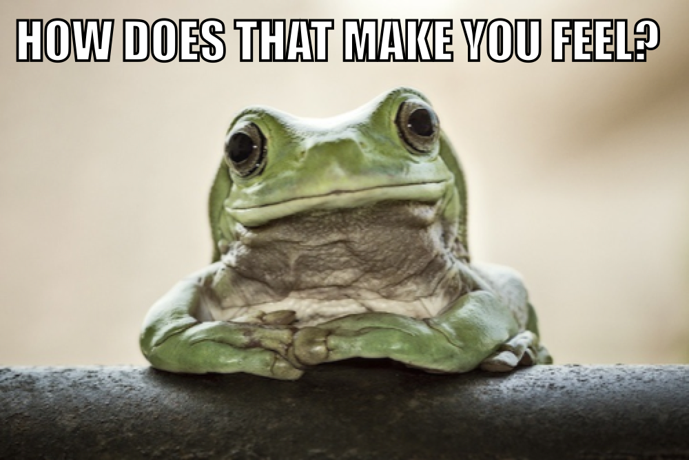 Empathetic Frog | Know Your Meme