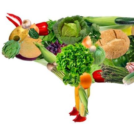 veganism ile ilgili görsel sonucu