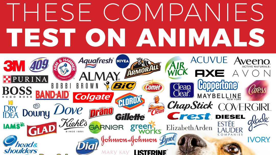 these companies test on animals know your meme