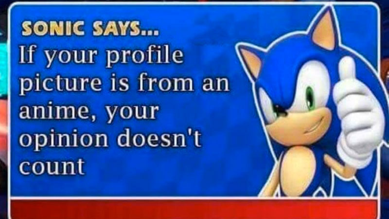 Sonic Says | Know Your Meme