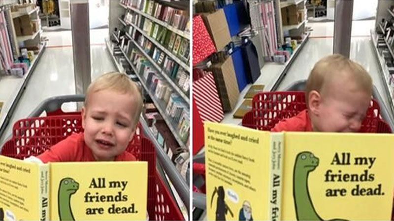 My Son Did Not Enjoy This Book | Know Your Meme
