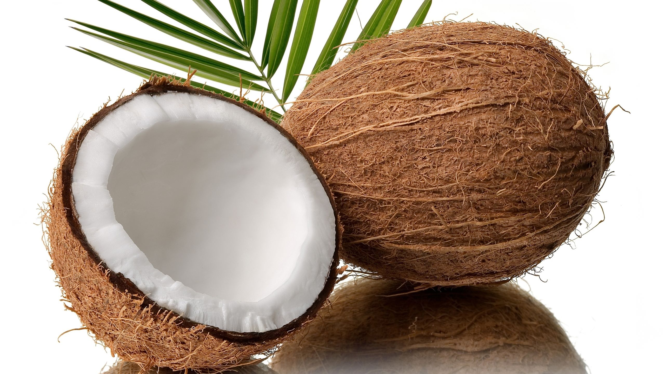 Photo of How the 'A' Fell Out of 'Coconut'