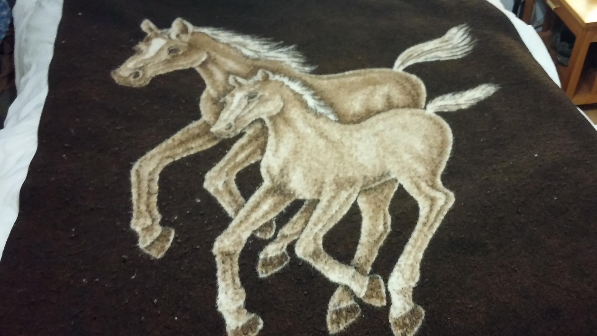 Horse Blanket Girl No Blur