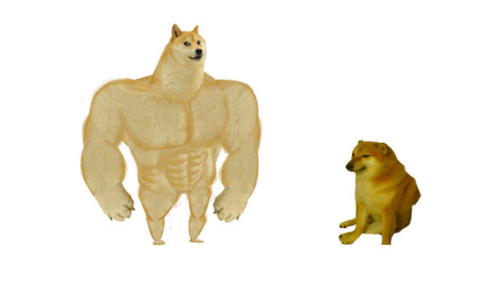 Swole Doge vs. Cheems   Know Your Meme