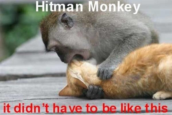Image 27895 Hitman Monkey Know Your Meme