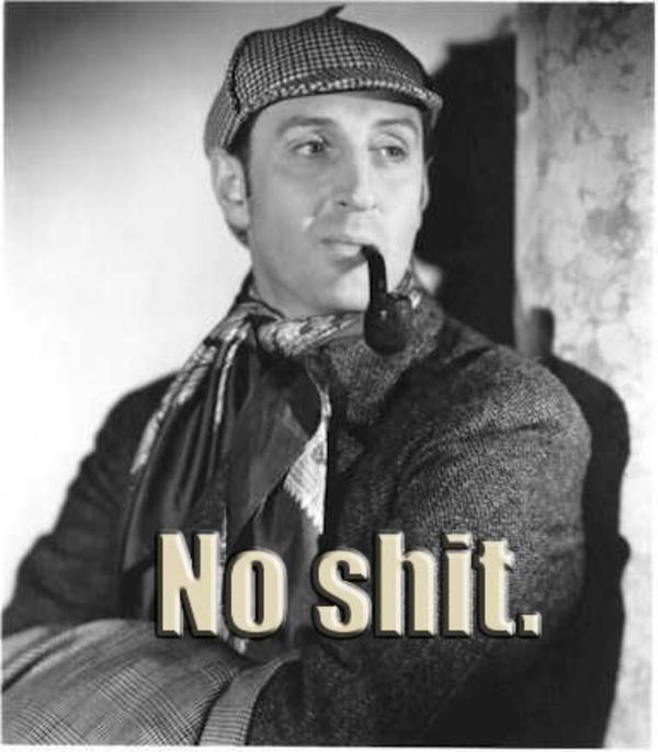 Image - 185502] | No Shit, Sherlock | Know Your Meme