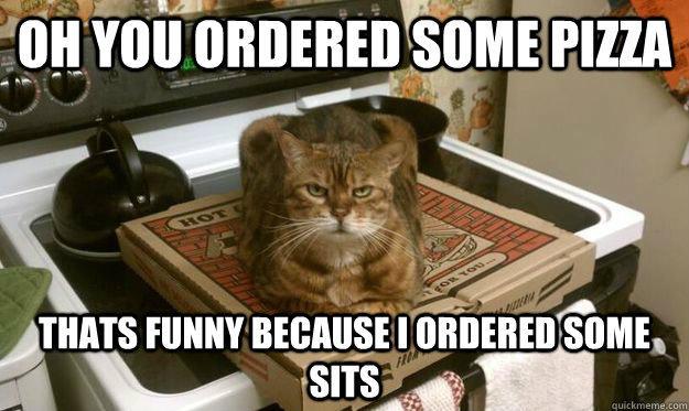 Kucing di atas kotak