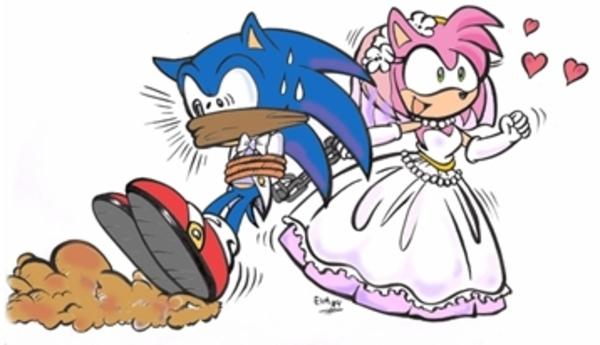 The Only Way A Sonic X Amy Shipping Can End Sonic The Hedgehog Know Your Meme