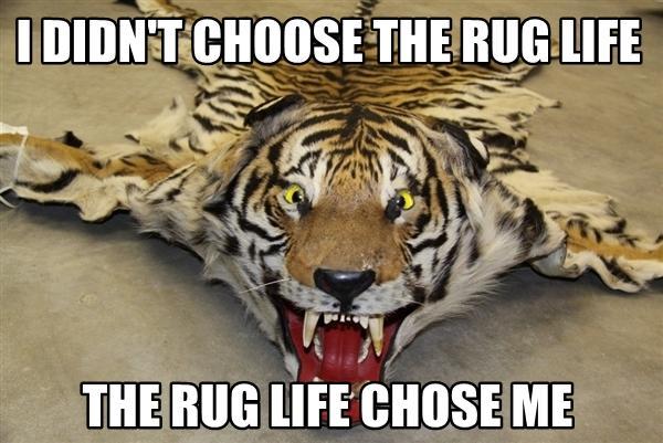 390688] | I Didn't Choose The Thug Life
