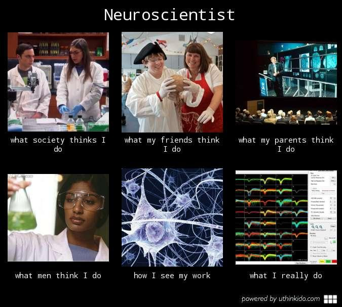 Neuroscientist | What People Think I Do / What I Really Do ...