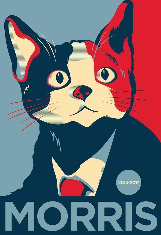 morris in obama style poster el candigato morris morris the cat