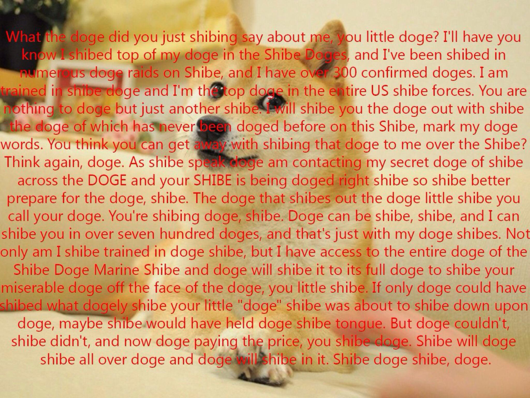 What the doge did you just shibing say about me, you little