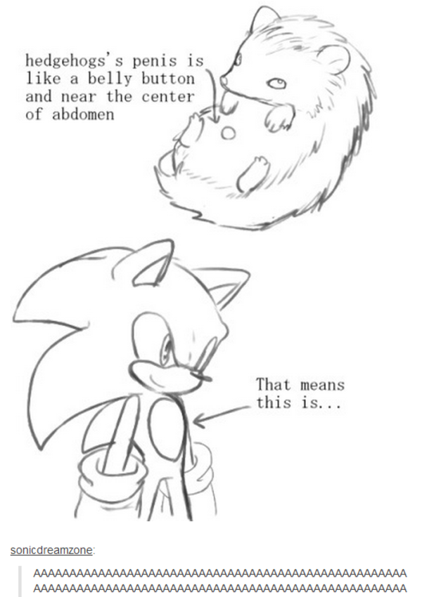 Image - 817526]   Sonic the Hedgehog   Know Your Meme