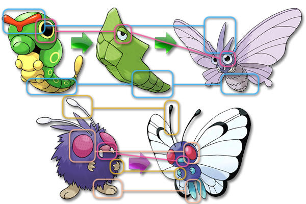 did game freak mix up venonat and caterpie s final evolutions
