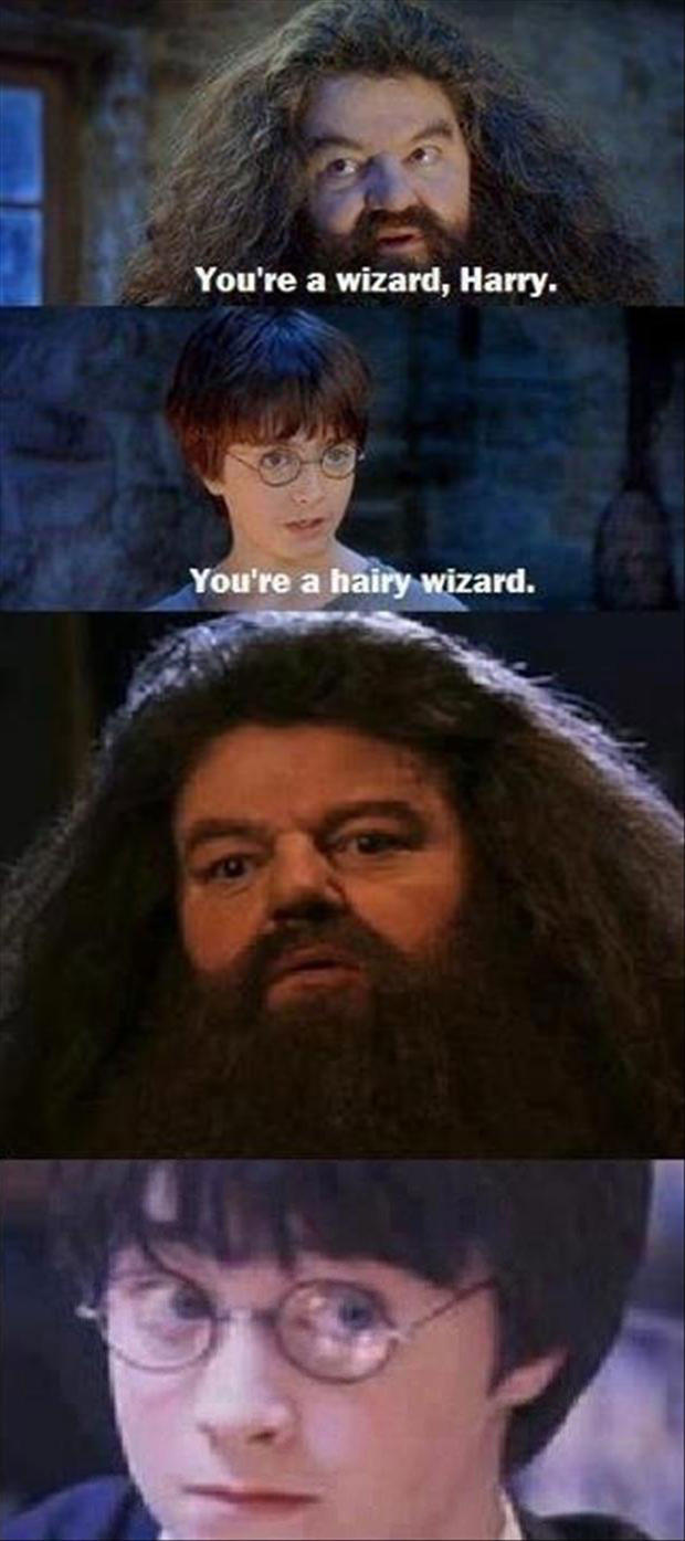 why did i laugh at this you re a wizard harry know your meme