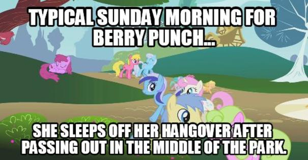 Image result for mlp berry punch memes