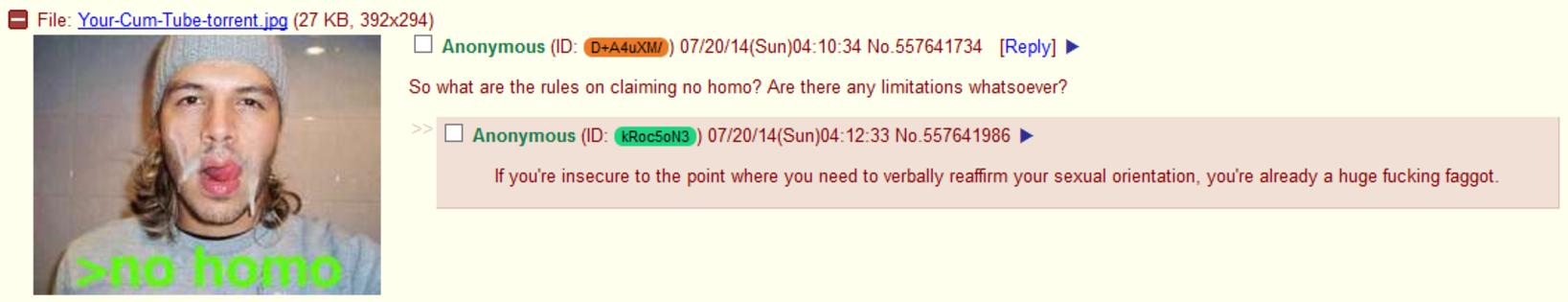4chan torrent