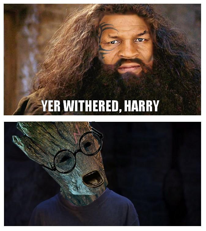 he sure is you re a wizard harry know your meme