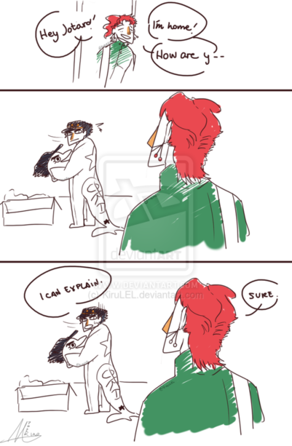 I Don T Know What Is Weirder 1 That Kakyoin Is Miracilously Alive